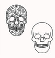 skull outlines with flowers inside floral vector image vector image