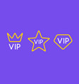 vip line icon flat exclusive important membership vector image vector image