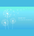 dandelion blowing silhouette vector image