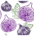 Fig Fruit Hand Draw Sketch Background Pattern vector image vector image