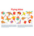 kites holiday flying entertainment paper toys vector image vector image