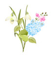 spring time concept of card with blooming flowers vector image vector image