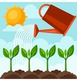 watering plants from can Image vector image
