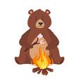 cartoon brown grizzly bear vector image vector image