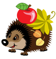 cartoon hedgehog vector image vector image