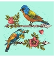 hand drawn bird vector image vector image