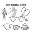 make a drink from dandelion pharmacy illust vector image vector image