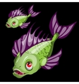 Predatory toothy green fish with purple fins vector image