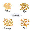 different types of grain vector image vector image
