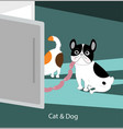 funny dog and cat vector image vector image