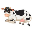 happy cow laying down vector image