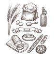 ingredients and bread set vector image vector image