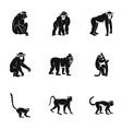 monkey icon set simple style vector image