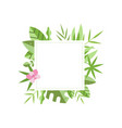 square frame with green tropical leaves and pink vector image