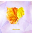 Autumnal leaf background made of triangles vector image