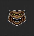 bear logo design template head icon vector image