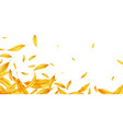 falling flying autumn leaves background realistic vector image vector image