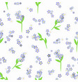 forget-me-not flowers on the white seamless vector image