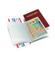 international passport with iceland visa sticker vector image vector image