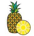 Pineapple isolated on white background vector image