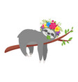 sloth character in floral wreath vector image