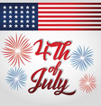 usa independence day design vector image