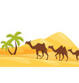 cartoon landscape of hot desert with three brown vector image vector image