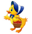 cartoon little duck carrying flowers in a basket w vector image vector image