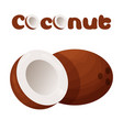 coconut icon cartoon style vector image