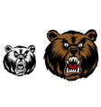Head of angry bear for mascot design vector image