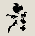 Squirrels Silhouettes vector image