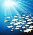 Underwater scene with school of tuna vector image