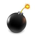 Black Bomb vector image
