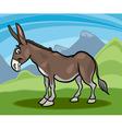 donkey farm animal cartoon vector image