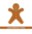 gingerbread man isolated vector image vector image