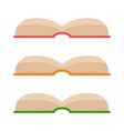 set of opening book icons vector image