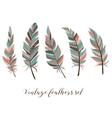 vintage feathers set five elegant feathers vector image