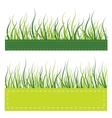 Green grass card vector image
