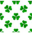 green irish trefoil clover for st patricks day vector image vector image