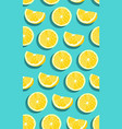 lemon fruits slice seamless pattern on green blue vector image vector image