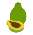Papaya fruit icon isometric 3d style vector image vector image