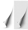 silver foil vertical paper corner rolled up vector image