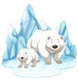 two polar bears on iceberg vector image vector image