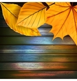 Autumn Leaves over wooden background plus EPS10 vector image vector image