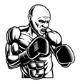 black white of box fighter vector image