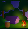 camping in forest-2 vector image vector image