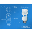 Compact Fluorescent Drawing vector image vector image