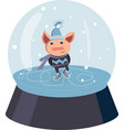 piggy skating skates on the ice in a snow ball vector image