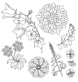 Set of black and white flowers vector image