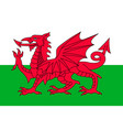 simple flag of wales vector image